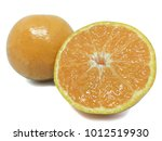 orange honeysuckle  orange
