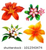 red and yellow lilies and... | Shutterstock . vector #1012543474
