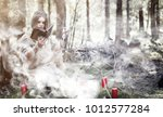 fairy magician. a sorcerer with ... | Shutterstock . vector #1012577284
