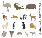 different animals cartoon icons ... | Shutterstock . vector #1012596274