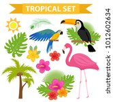 tropical icon set with birds... | Shutterstock .eps vector #1012602634
