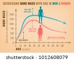 decreasing bone mass with age... | Shutterstock .eps vector #1012608079