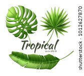 realistic tropical leaves set.... | Shutterstock .eps vector #1012627870