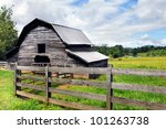 horse grazes in the pasture...   Shutterstock . vector #101263738