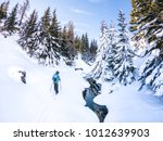 young woman touring on skis in... | Shutterstock . vector #1012639903
