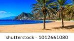 beautiful beaches of tenerife   ... | Shutterstock . vector #1012661080