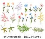 vector floral set on white... | Shutterstock .eps vector #1012691959