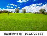green meadow in the sunny day  | Shutterstock . vector #1012721638