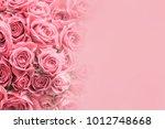 Stock photo rose flower background 1012748668