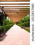 Small photo of A garden with a pergola of wood in a infinity view optical illusion.