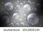 light gray vector cover with... | Shutterstock .eps vector #1012835134