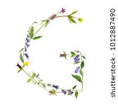 watercolor drawing letter g... | Shutterstock . vector #1012887490