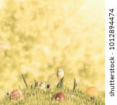 easter eggs and flowers in... | Shutterstock . vector #1012894474