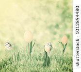 easter eggs and flowers in... | Shutterstock . vector #1012894480