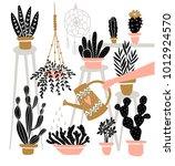 set of various  indoor potted... | Shutterstock .eps vector #1012924570