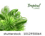 Realistic Tropical Leaves...