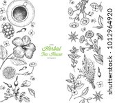 herbal tea shop vector... | Shutterstock .eps vector #1012964920