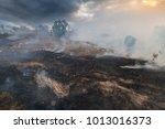 bushfire  burned black land on... | Shutterstock . vector #1013016373