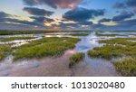 Wadden Sea Mud Flats Of A Tidal ...