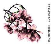 a lush bouquet of flowers... | Shutterstock .eps vector #1013034616