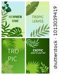 beautiful vector floral summer...   Shutterstock .eps vector #1013039419