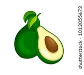 vector fresh fruit avocado... | Shutterstock .eps vector #1013055673