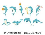 Bottlenose Dolphin Performing...