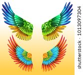 colorful macaw wings | Shutterstock .eps vector #1013097304