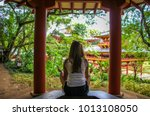 byodo in temple and buddhist... | Shutterstock . vector #1013108050