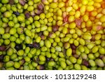 close up   small green and... | Shutterstock . vector #1013129248