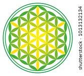 green energy flower of life... | Shutterstock .eps vector #1013132134