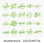 set of hand written lettering... | Shutterstock . vector #1013144716