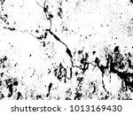 grunge texture   abstract stock ...   Shutterstock .eps vector #1013169430