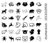 wildlife icons. set of 36... | Shutterstock .eps vector #1013210920