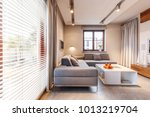 grey corner couch and white... | Shutterstock . vector #1013219704