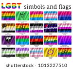 set symbols  flags lgbt... | Shutterstock .eps vector #1013227510
