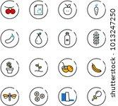 line vector icon set  ...   Shutterstock .eps vector #1013247250