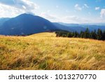 mountain landscape in sunny day | Shutterstock . vector #1013270770
