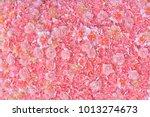 Photo Image Of Pink Carnation...