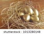 financial success. golden egg... | Shutterstock . vector #1013280148