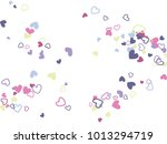 blue and pink valentine's day...   Shutterstock .eps vector #1013294719