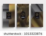luxury packaging templates.... | Shutterstock .eps vector #1013323876