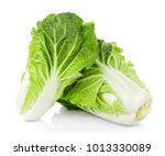 fresh chinese cabbage on a... | Shutterstock . vector #1013330089