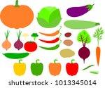 vector flat vegetables set | Shutterstock .eps vector #1013345014