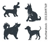 black hand drawn isolated dogs...   Shutterstock .eps vector #1013349769