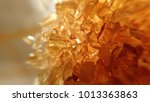 macro photo of semi precious...   Shutterstock . vector #1013363863