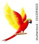 budgerigar parrot ara  macaw...   Shutterstock .eps vector #1013393023