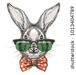Rabbit In Glasses. Vintage Han...