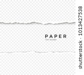 horizontal seamless torn paper... | Shutterstock .eps vector #1013427538