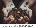 gardener with dirt for planting.... | Shutterstock . vector #1013433460